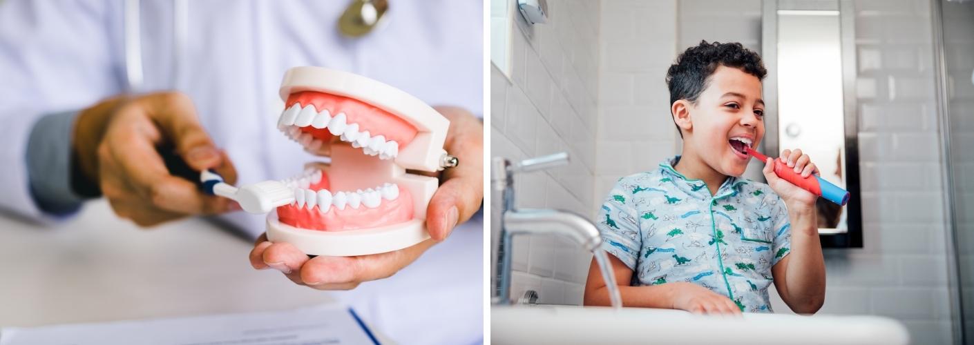 Cómo cepillarse correctamente los dientes